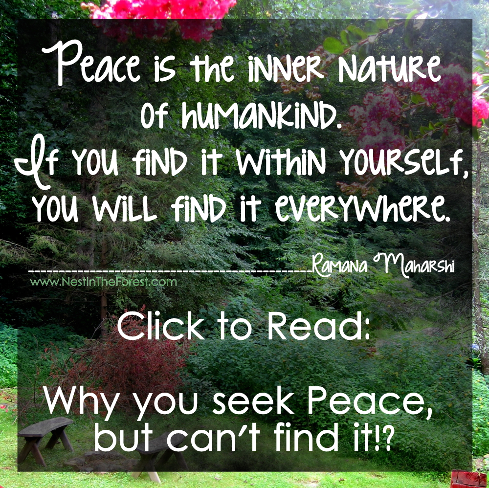 Why you seek Peace, but can't find it!?
