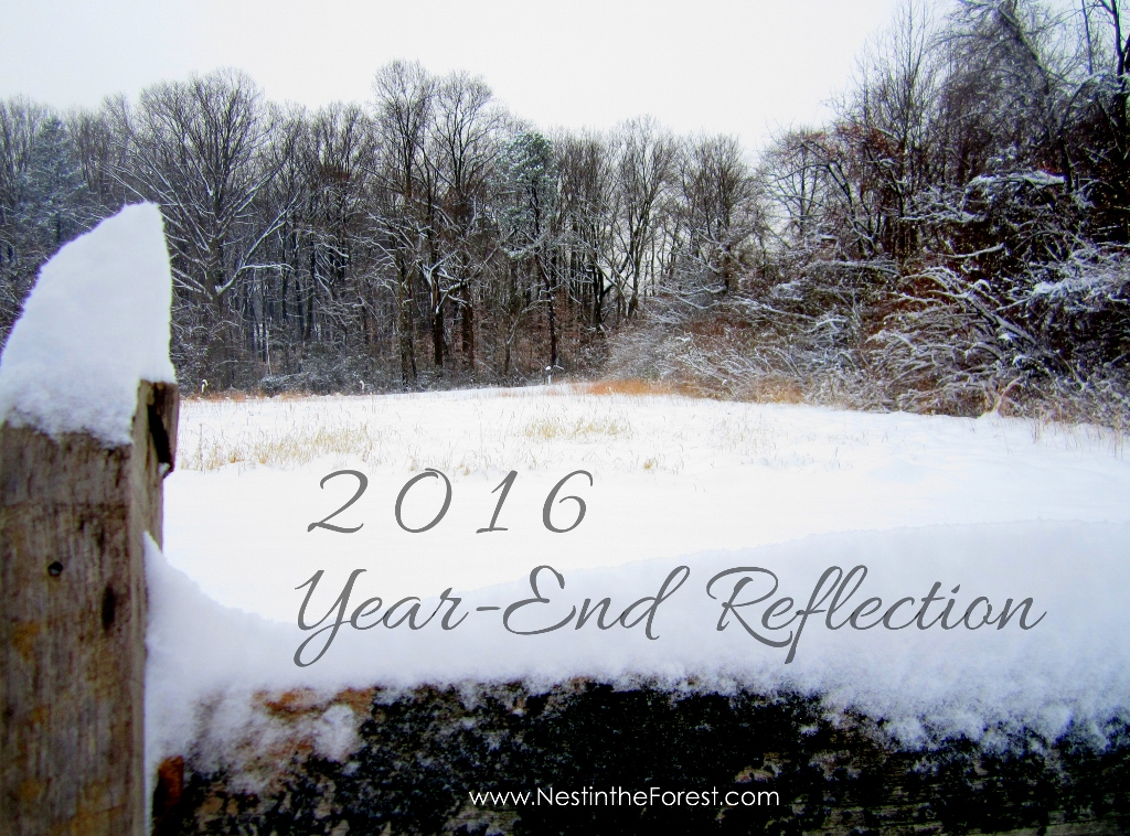 Year-End Reflection: 5 Questions to ask yourself