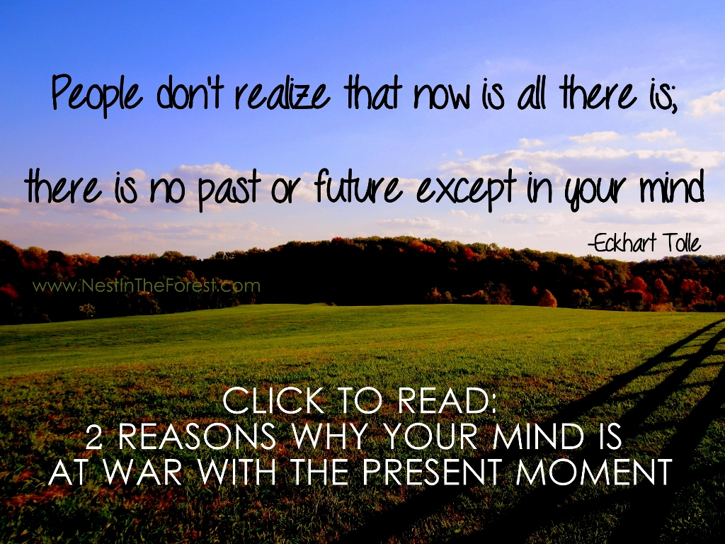 2 Reasons why your Mind is at-war with the Present Moment
