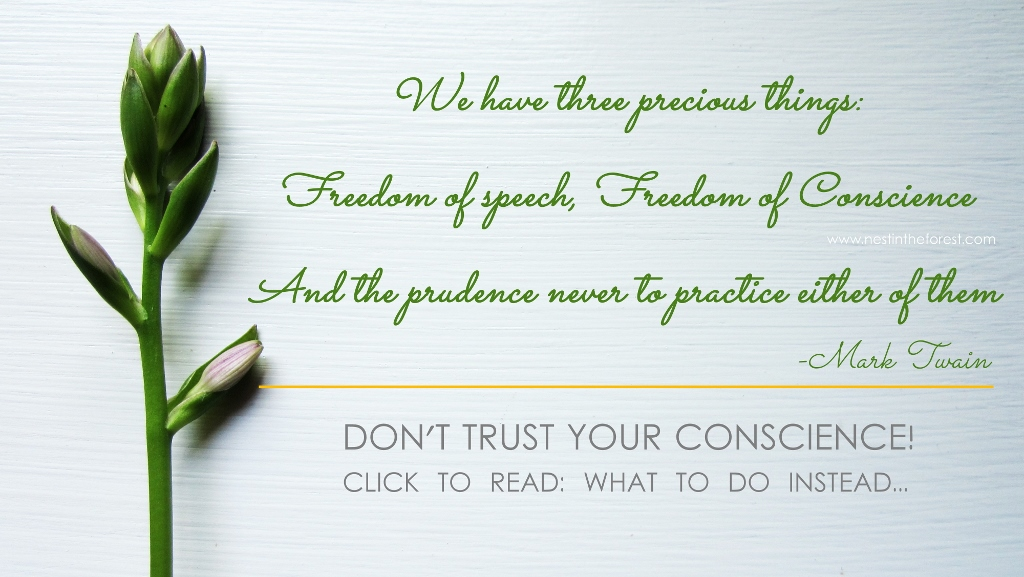 Why you should not trust your Conscience. And what to do instead